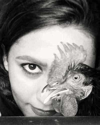 نقد عکس خروس سیاه من