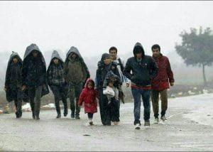 عکس مهاجرت