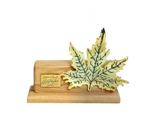 جایزه تهران دارالفنون