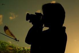 سوژه عکاسی